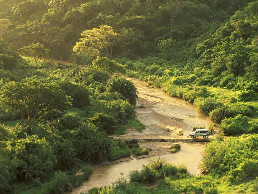 Rhino Ridge