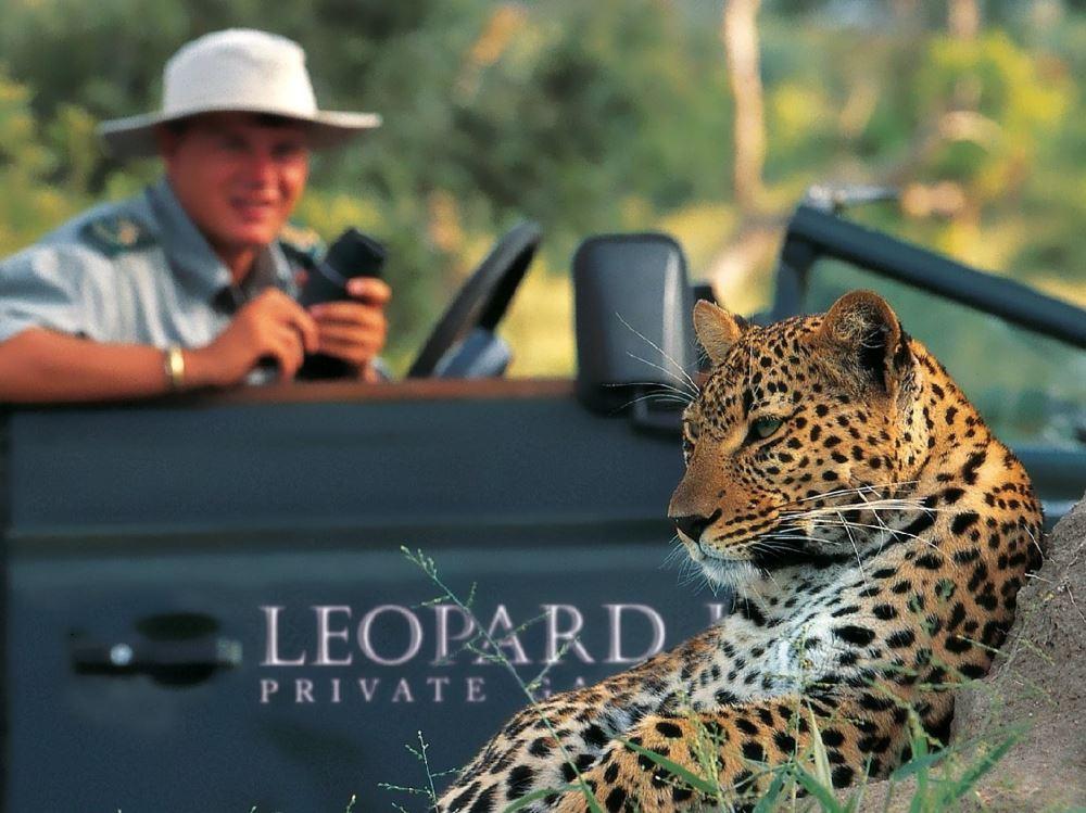 Leopard Hills
